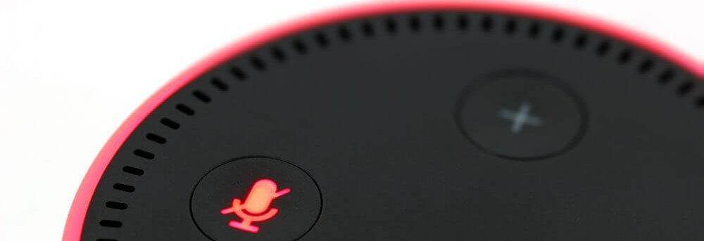 Amazon Voice Search Echo